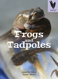 Frogs and Tadpoles [Book Cover]